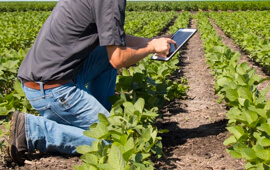 Agriculture to Agritech