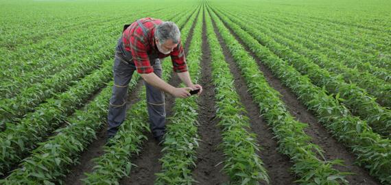 Farmer engagement platform