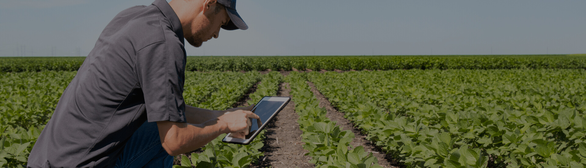 Agritech Report 2021